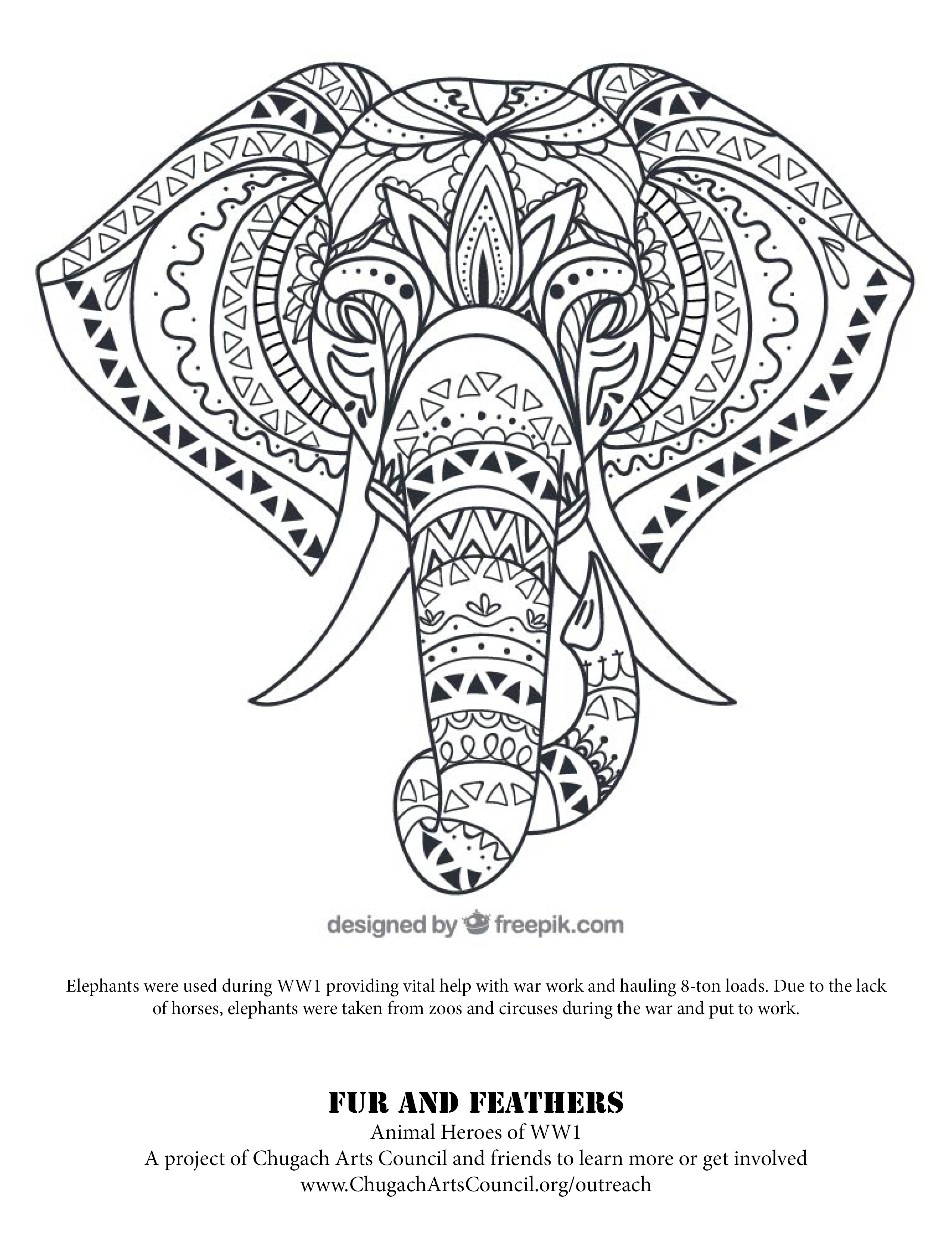 Coloring Pages Fur and Feathers